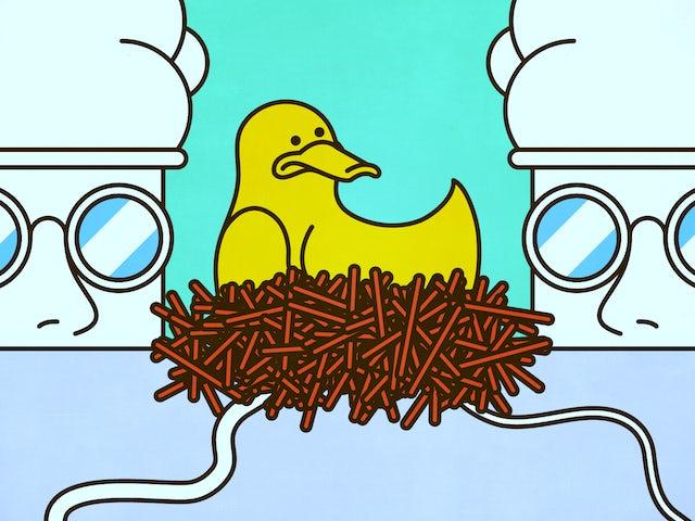 Doctors birth mother home duck czech.png?ixlib=rails 0.3