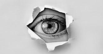 Eye 2055720 1920.jpg?ixlib=rails 0.3