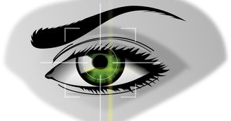 Maxpixel.freegreatpicture.com security iris scanner biometrics eyebrows iris eye 154660.png?ixlib=rails 0.3