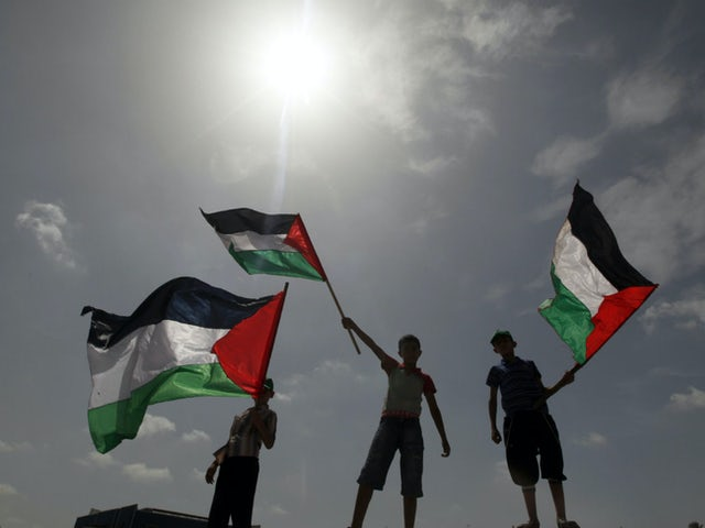 Palestine flag img.jpg?ixlib=rails 0.3