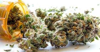 Medical marijuana.jpg  blank .jpeg?ixlib=rails 0.3