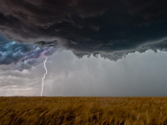 Lightningandwheatfieldelmer 1545229850815 6580.jpg?ixlib=rails 0.3