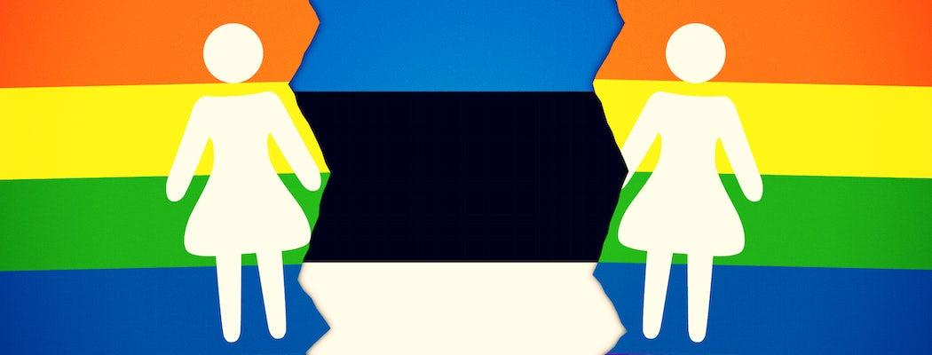 Same sex marriage estonia 2x.png effected.png?ixlib=rails 0.3