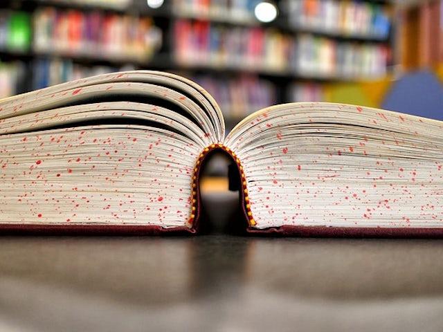 Book 92771 640.jpg?ixlib=rails 0.3