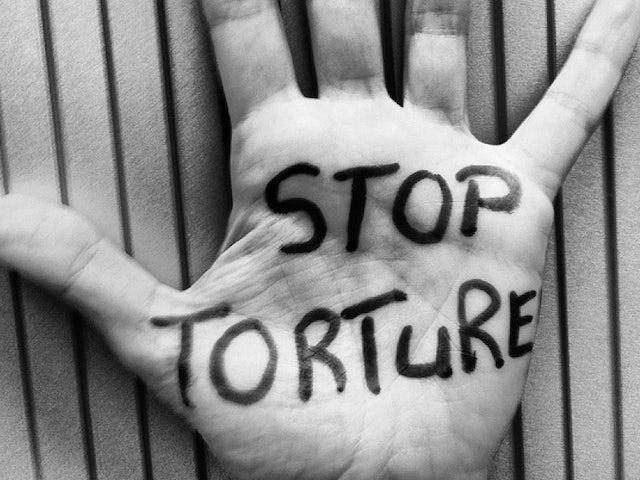 Stop torture1.jpg?ixlib=rails 0.3