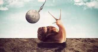 Bulgaria home demolition snail strasbourg.png effected.png?ixlib=rails 0.3